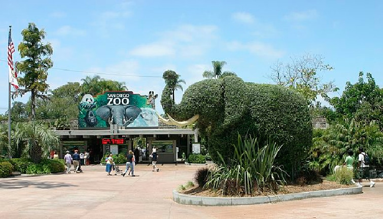 Three Workers Hurt at San Diego Zoo